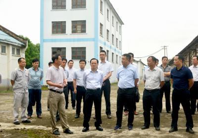来宾市市长雷应敏到红河制糖公司调研 吴卫南陪同