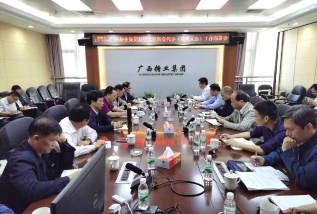 广糖集团召开基层党组织党代会工作部署大会
