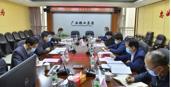 自治區黨委改革辦副主任蔣紅林帶隊到廣糖集團調研糖業改革發展工作