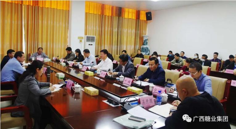 李东带队到靖西市协商靖西制糖关停及土地开发事宜 与地方达成一致意见